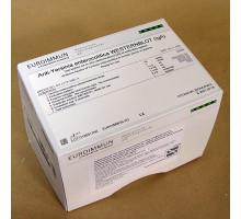 DY2173-1601A Иерсиния энтероколитика IgA, иммуноблот