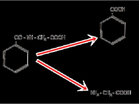 Гидролиз гиппурата
