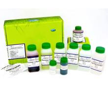Диахим-Набор для клинического анализа кала