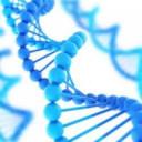 Молекулярно-генетические методы