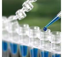 3318.0250 Набор diaGene для выделения геномной ДНК из бактериальных клеток, до 25 мкг, 250 выделений