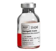 354248 Матрикс базальной мембраны (высокой концентрации, HC) LDEV-FREE, MATRIGEL® CORNING®, 10 мл (-20°)